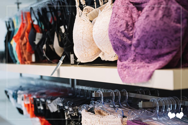 8 Dicas úteis para um revendedor de lingerie